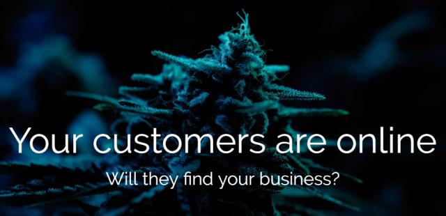 Cannabis Marketing from Buoyancy Digital